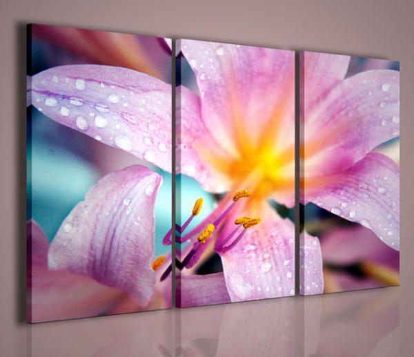 Quadri Moderni-Quadri Fiori e Piante-Fantastic Flower | Quadri Moderni