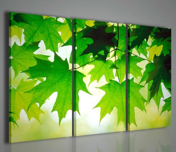 Quadri moderni quadri di fiori e piante naturally quadri for Immagini quadri fiori