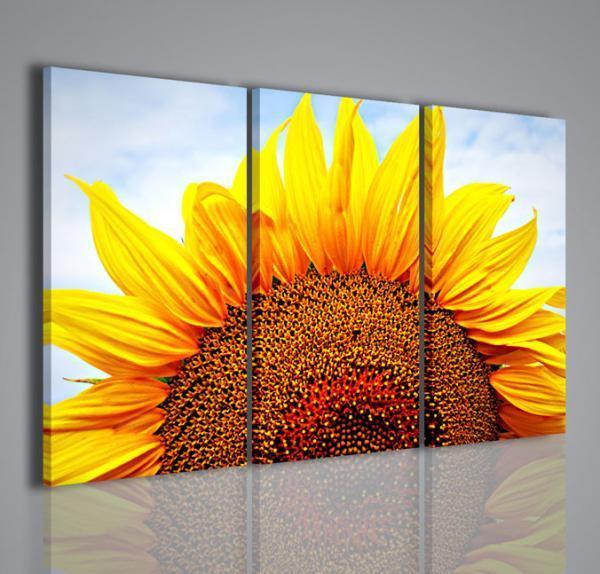 Quadri moderni quadri di fiori e piante sunflower vii for Quadri di fiori
