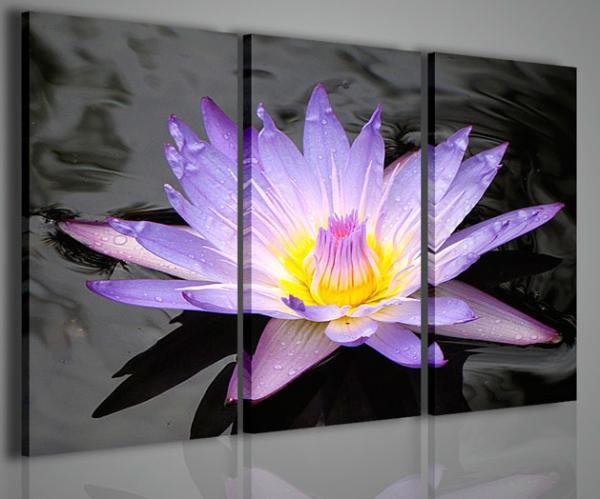 Quadri Moderni-Quadri di Fiori e Piante-The Flower of Dreams ...