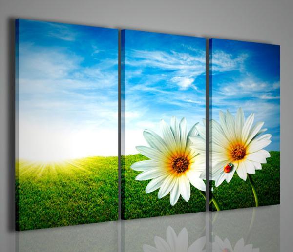 Quadri Fiori Moderni : Quadri moderni fiori e piante daisies