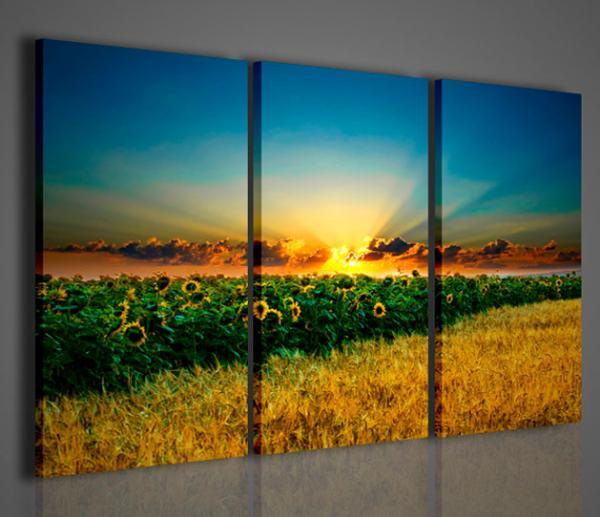 quadri moderni quadri di natura e paesaggi beuatiful