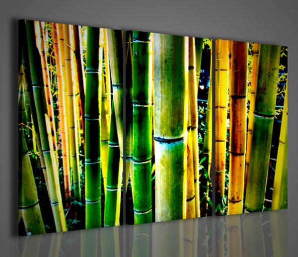 Quadri Moderni-Quadri Etnici-Bambù Detail | Quadri Moderni